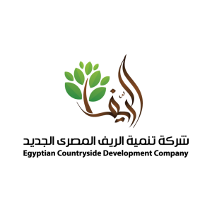 Accounts Receivable Section Head at Egyptian countryside development company - Cairo