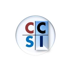 Account Manager-ERP at CC Staffing International Ltd. - Beirut