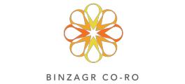 Financial Controller at Binzagr CO-RO LTD - Jeddah