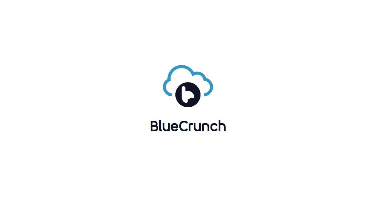 Job: UI/UX Designer at BlueCrunch in Cairo, Egypt