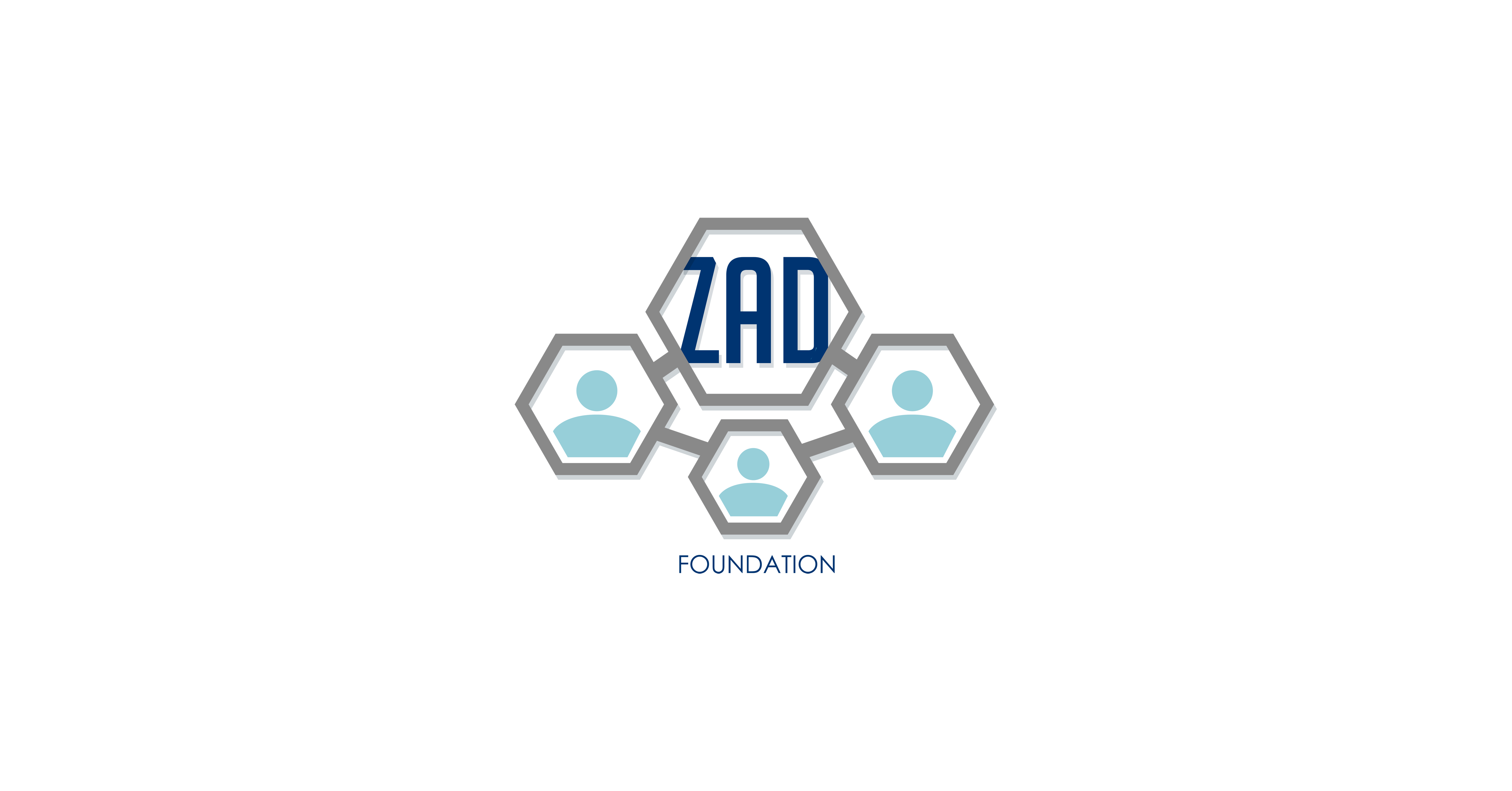 Job: Solar Engineer at Zad Foundation in Alexandria, Egypt
