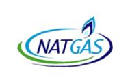 Tax Accountant at NAT GAS - Cairo