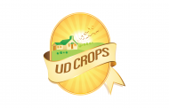 Job: Sales Account Executive at UD Crops in Cairo, Egypt
