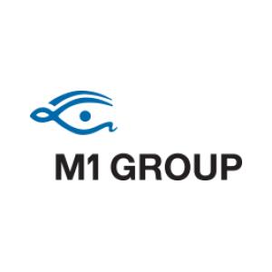 Senior Accountant at M1 Services - Beirut